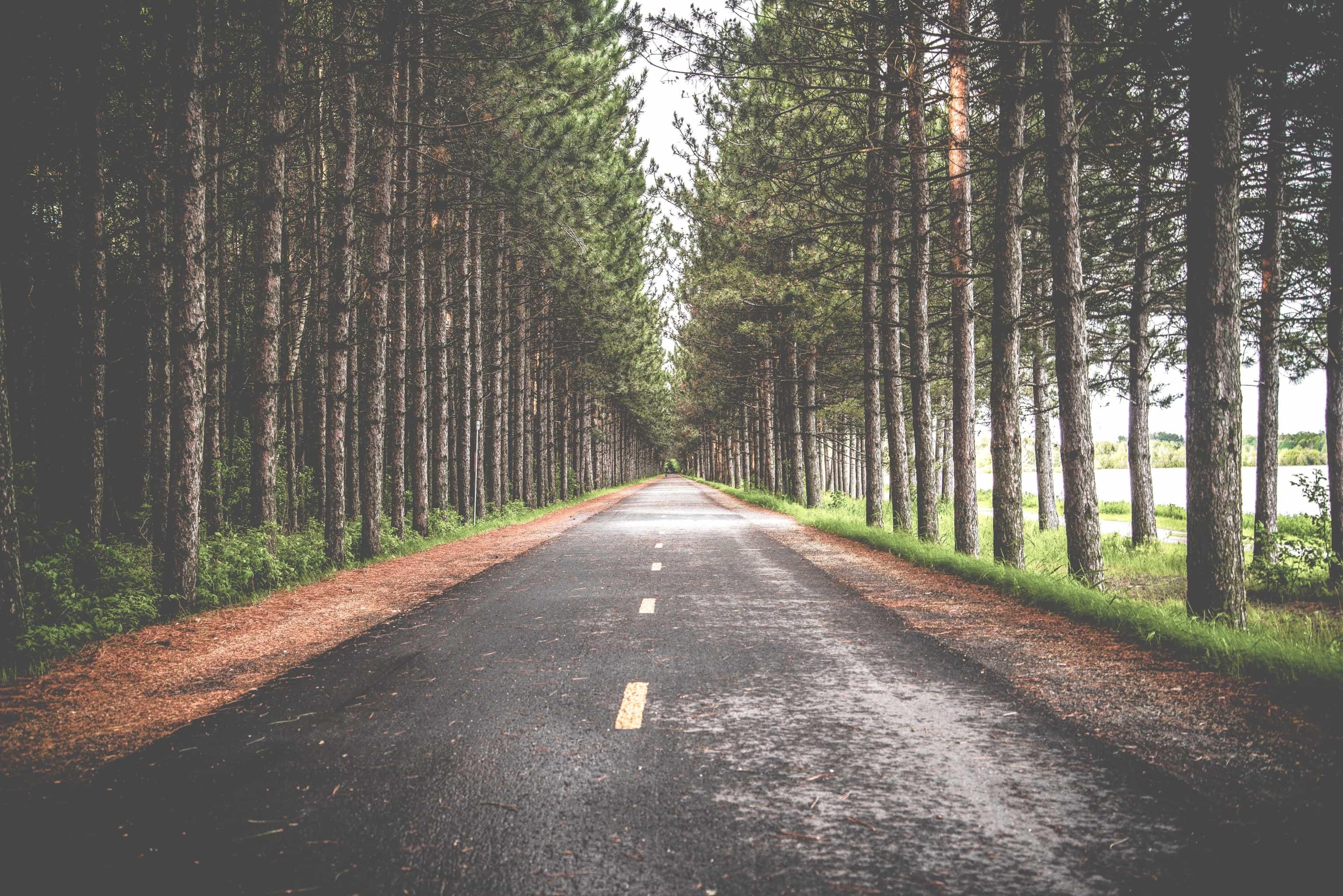 camino-objetivo-meta